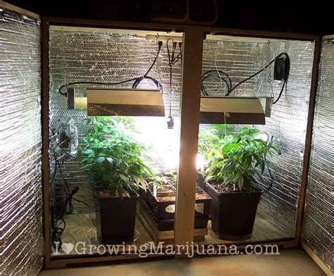 Grow Room by Set Up A Low Budget Marijuana Grow Room Cheap Cannabis