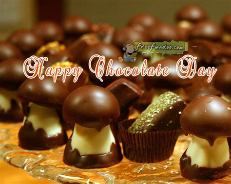 cocoa day chocolate day 88 23556333 chocolate day addphotoeffect