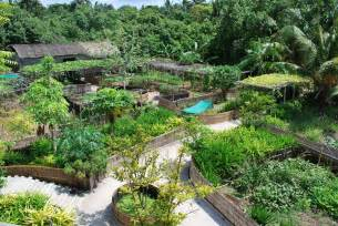 permaculture maldives quot fresh in the garden quot