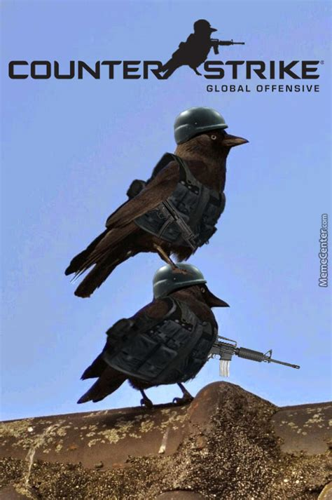 cs crow by shimon trabelsi 7 meme center