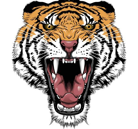 tiger face transparent png png mart