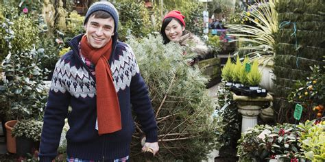 how to keep a real christmas tree looking fresh in five