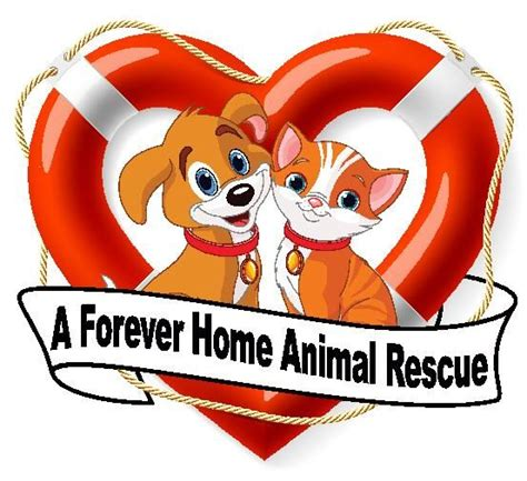 a forever home animal rescue inc