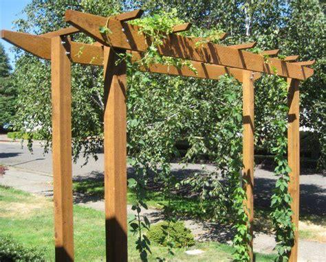 backyard hops best 25 hops trellis ideas on pinterest hops plant arbors and plants on deck