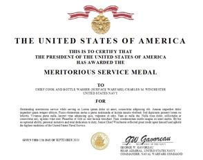 meritorious service medal citation template meritorious service medal