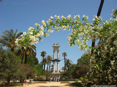 Un Patio En Santa Cruz Sevilla Sevilla Los Jardines De Murillo La Primavera Y Luis