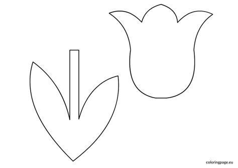 tulip template tulip coloring pages bestofcoloring