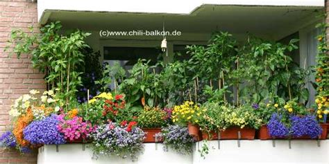 Chili Balkon by Bilder Der Balkonsaison 2006 Serie Ii