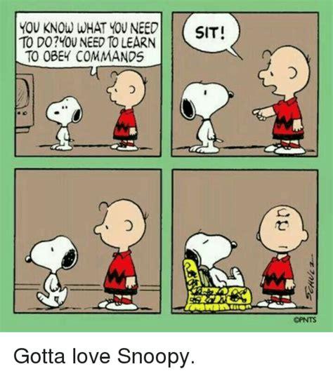 Snoopy Meme - 25 best memes about snoopi snoopi memes