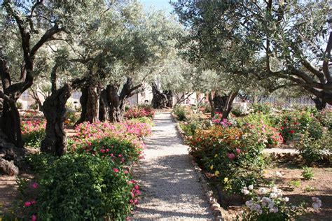 Garden Of by The Garden Of Gethsemane By Iluvrocket On Deviantart