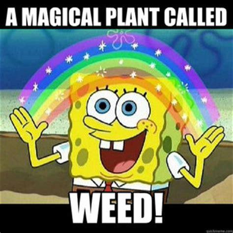 Spongebob Weed Memes - spongebob weed meme quickmeme picture to pin on pinterest