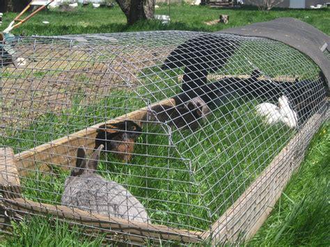 Rabbit Pen rabbit pen on rabbit hutch plans outdoor