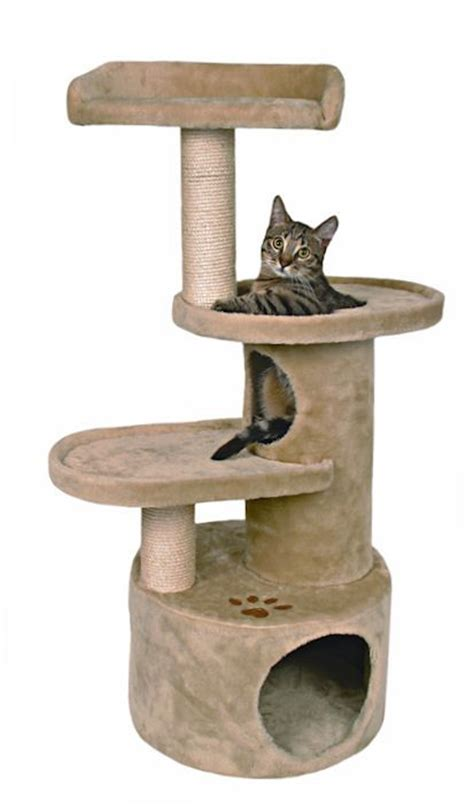 best 25 cat tree plans ideas on pinterest cat condo plans cat accessories tree and scratching post