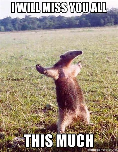 I Will Miss You Meme - i will miss you all this much anteater meme generator