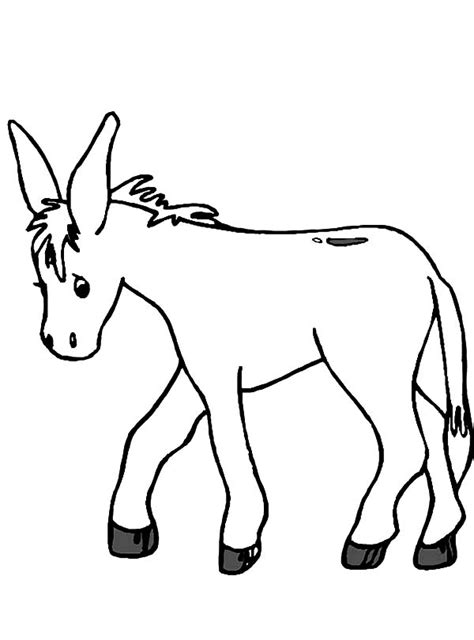donkey head coloring page donkey drawing clipart best