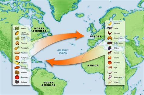 columbian exchange map the columbian exchange trading spices goods savory spice