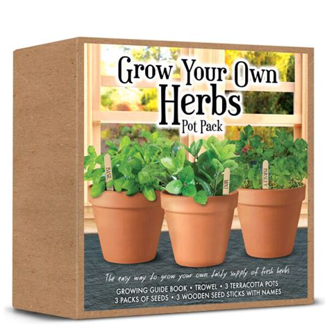 Grow Your Own Herbs by Grow Your Own Herbs Set Toys Thehut