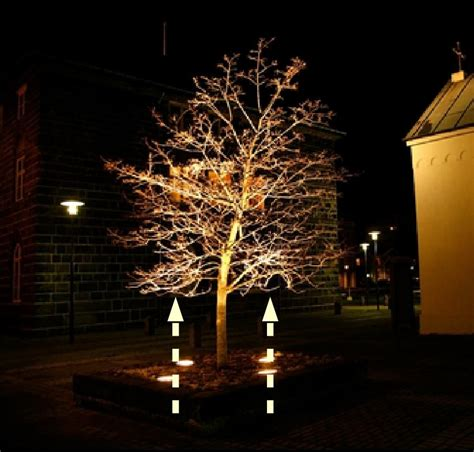 Outdoor Up Lighting For Trees Solar Powered Outdoor Tree 100 Images Solar Powered Tree Lights Outdoor Rainforest Islands