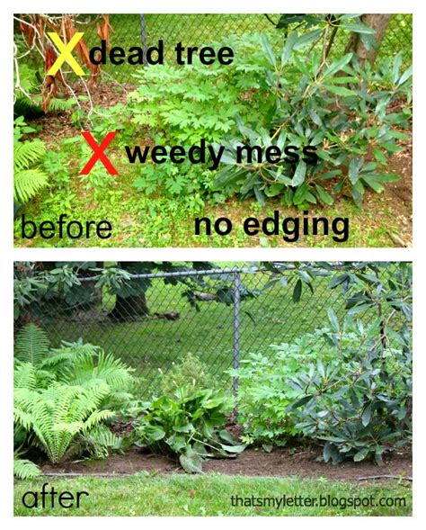 Landscape Edging Or Not How To Install Landscape Bed Black Edging Pretty Handy