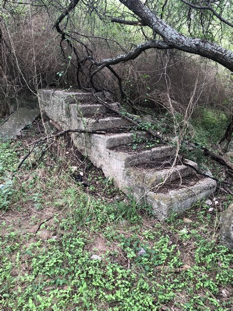 I Found A Staircase In The Woods Mildlyinteresting