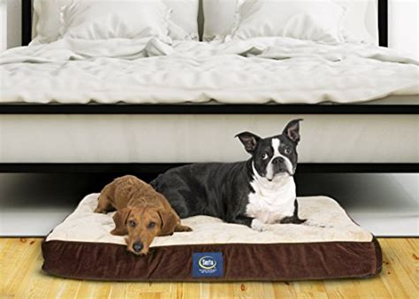 serta quilted pillow top dog bed serta pet beds serta orthopedic quilted import it all