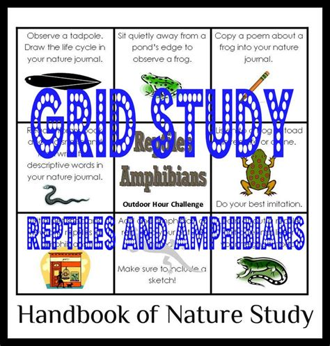 the nature handbook 1000 images about nature study reptiles and amphibians