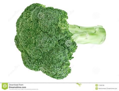 broccolo a testa testa verde fresca cavolo broccolo con il gambo