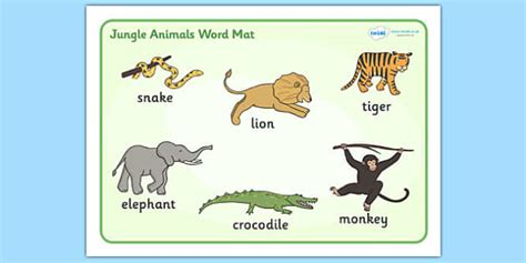 to om from your mat to your books jungle animal themed word mat walking through the jungle
