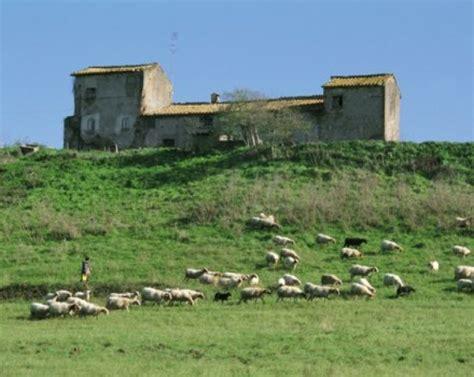 regione lazio valle dei casali 6 febbraio riserva naturale della valle dei casali