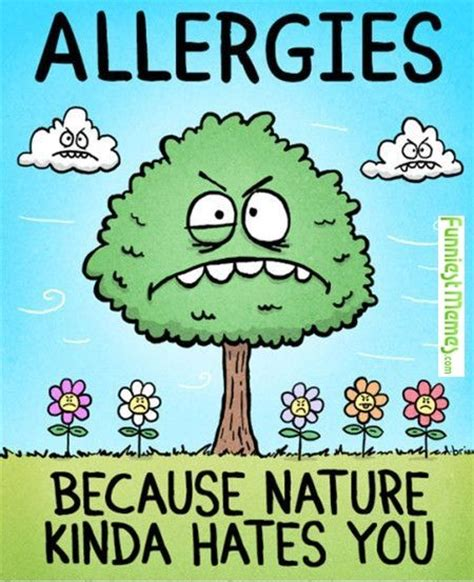 Allergy Meme - allergy memes image memes at 28 images allergies meme