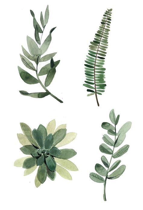 botanical painting in gouache 25 best botanical illustration ideas on