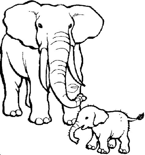 colouring pages of animals amazing willpower coloring pages of baby zoo animals pioneering