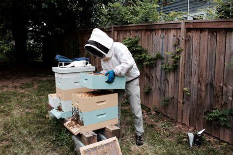 backyard beekeepers association backyard beekeepers association 100 backyard beekeepers