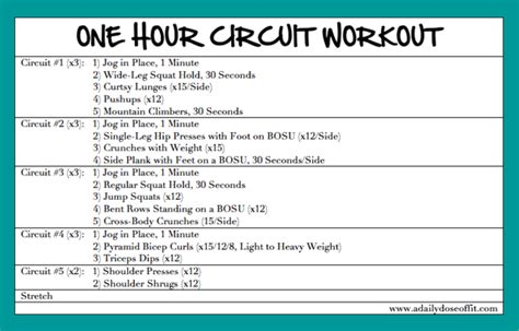 a daily dose of fit one hour circuit workout weekend recap
