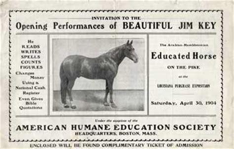 beautiful jim key horse  man