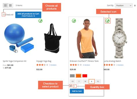 Multy Spray magento 2 add products to cart