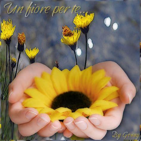 un fiore per te profilo di gaia nn su libero community