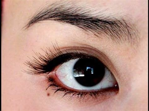 How To Apply Eye Lash Extensions by How To Apply Eyelash Extensions To Asian Or Hooded