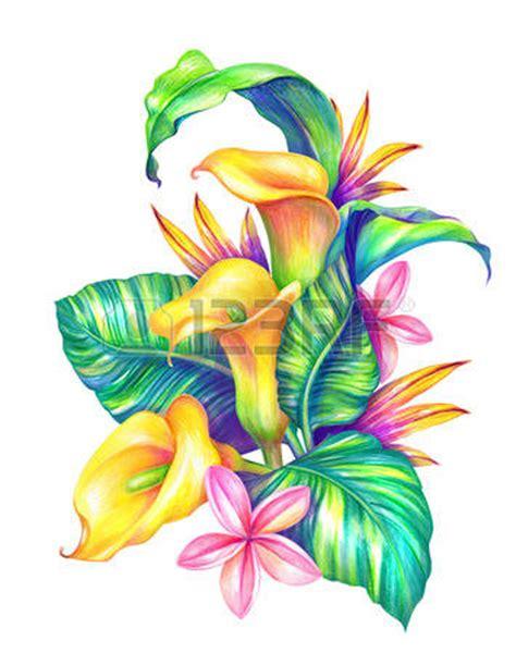 dessin fleurs exotiques feuilles et fleurs tropicales