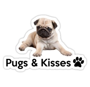 pugs and kisses card quot pugs and kisses quot stickers by gemzi ox redbubble