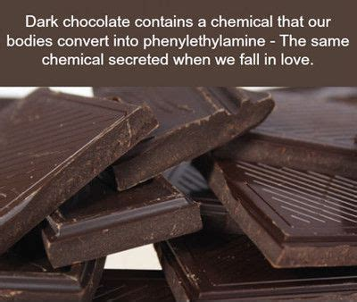 Chocolate Memes - funniest memes dark chocolate contains a chemical 8489