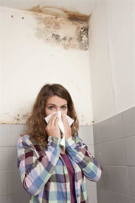musty bedroom smell image gallery musty odor