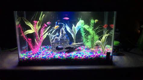 glofish tank with led white and blue on