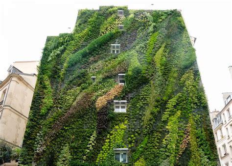 giardino verticale in casa giardini verticali esterni