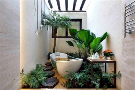 Houseplants For The Bathroom by Plants In The Bathroom The Best Suggestions For You