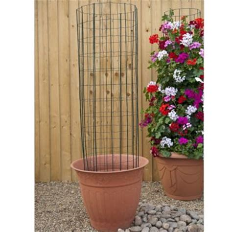 frame for climbing plants buy climbing frame plant support 1 frame for garden or
