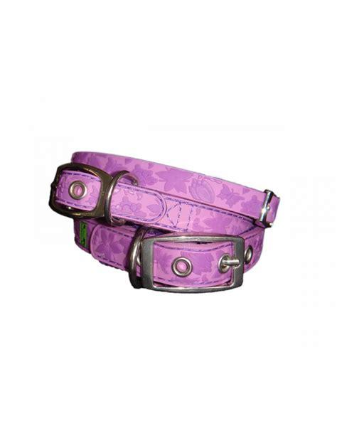 purple collars gummi collars purple floral apetslife co za