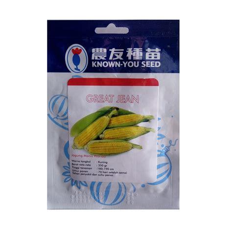 Benih Jagung Manis benih jagung manis great jean 10 gram known you seed