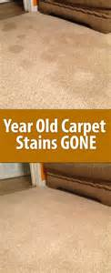 Remove Set In Carpet Stains 16 Home Cleaning Tutorials Interior Fans