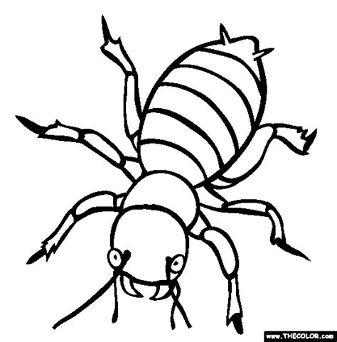 bed bugs color tiny creature bug 20 bug coloring pages free printables